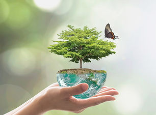 planting-tree-on-green-globe-for-arbor-day-world-environment-and-csr-picture-id961077862.j
