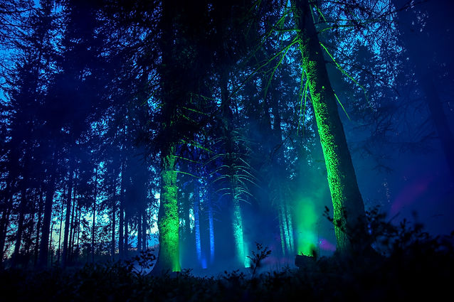 magic forest landstreff lillehammmer