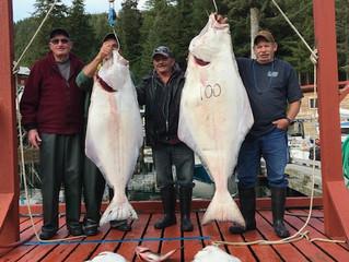Aug 11 - 17 Fishing Update