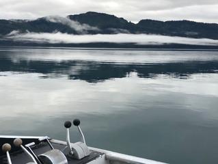 Aug 18 - 24 Fishing Update