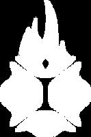 iry_logo_white.png