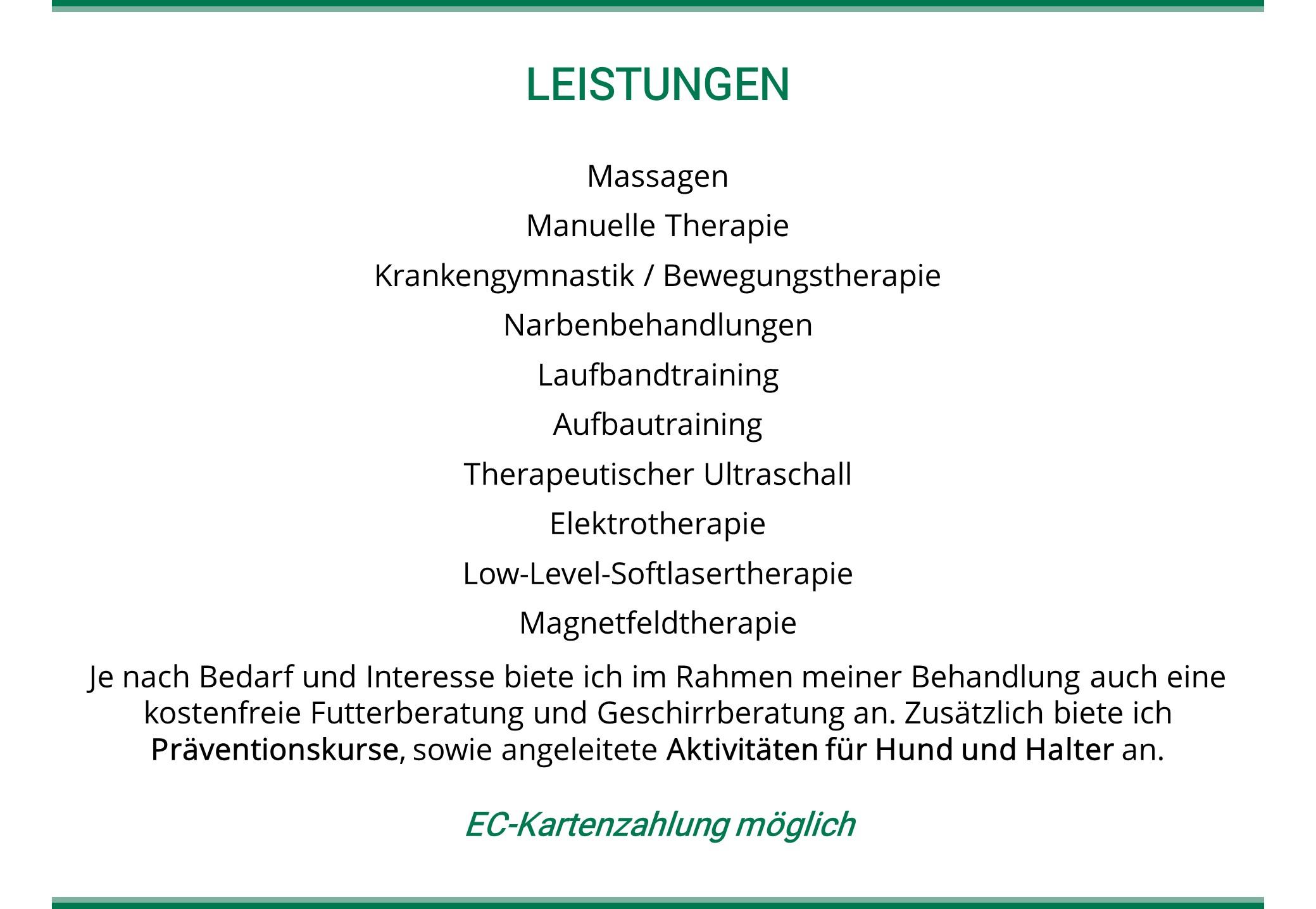 Tierphysiotherapeutische Leistungen