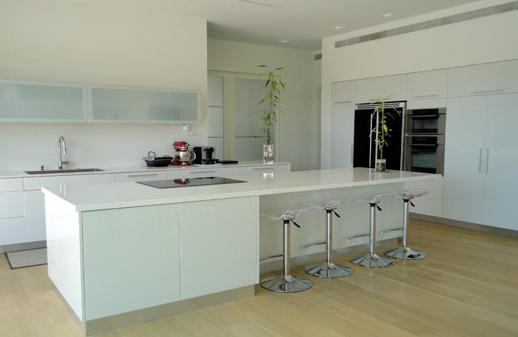 modern style house caesarea, black and white interior design