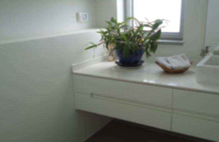עיצוב חדרים רטובים, עיצוב שירותים