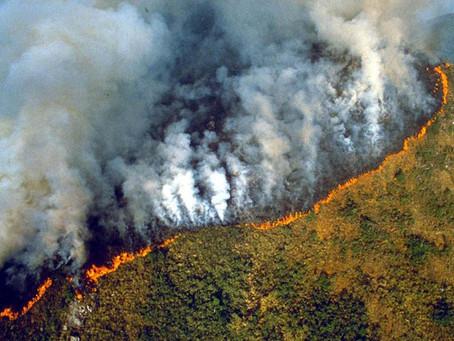 亞馬遜大火