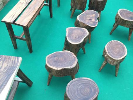 香港樹凳的訊息