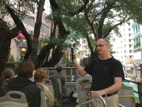 園境建築師 在城市種樹