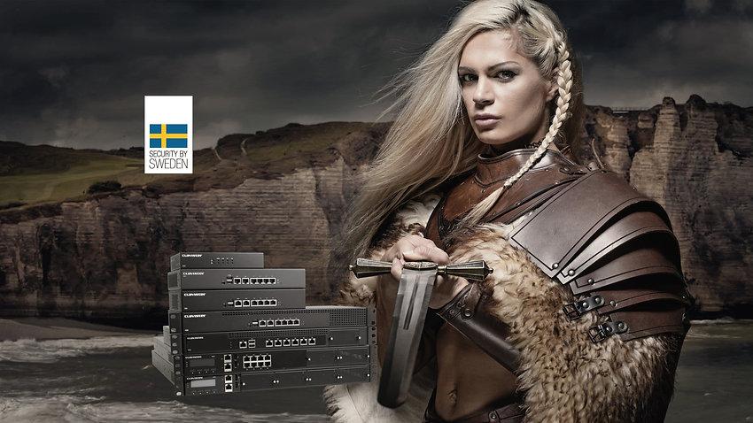 Viking_plaat_edited.jpg