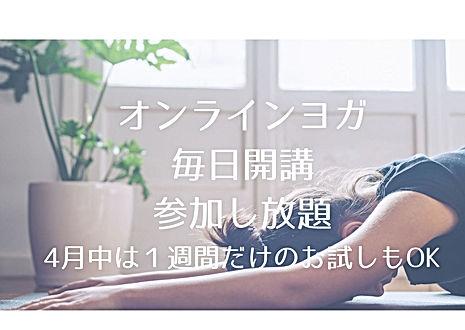 オンラインレッスン 毎日開講 参加し放題 (1).jpg