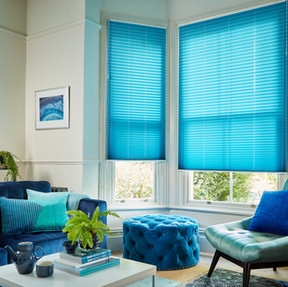 Margurite Blue