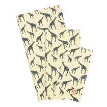 fb-beeginner-set-giraffes.jpg
