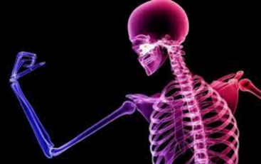 Should you be Concerned about your Bone Health?