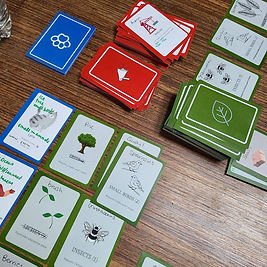 ecosystem game.jpg