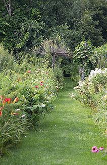 Prince Edward County garden