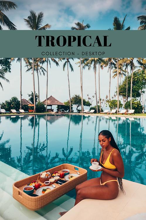 Tropical Presets - Desktop