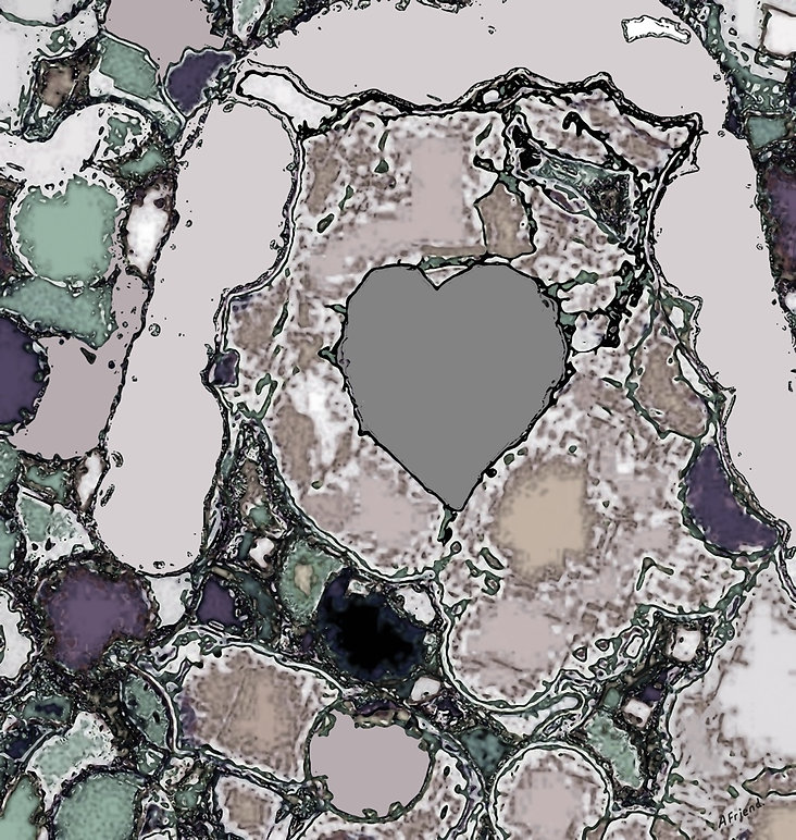 A Heart of Stone.jpg