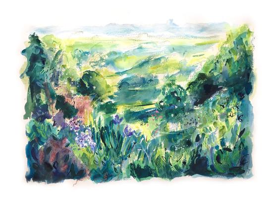 Washburn Valley Garden