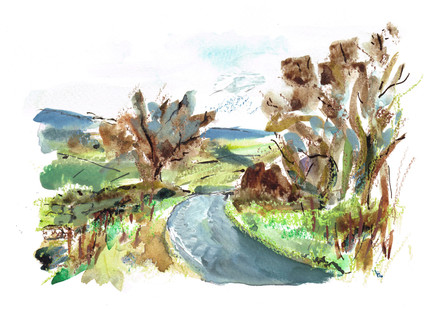Washburn Valley Towards Swinsty