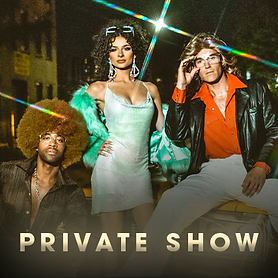 TheDiscoNights_Band-PrivateShows_Photo.p
