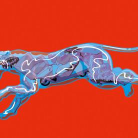 panther (4).jpg