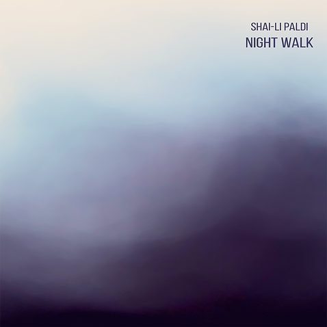 night walk cover 2.png