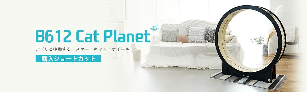 jap_banner.png