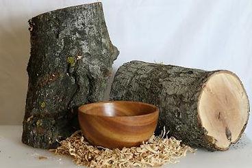 bowl & log.jpg
