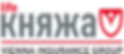лого страховая компания Княжа Лайф VIG