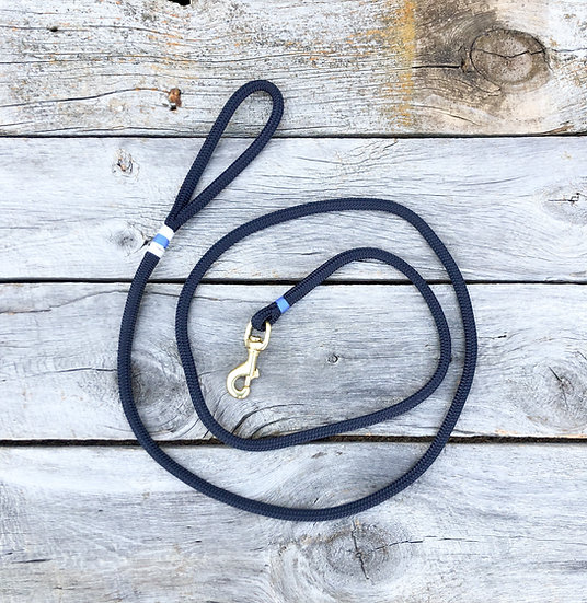 Navy/Pacific Blue Dog Leash