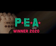PEA%20Winner%20Badge_edited.jpg