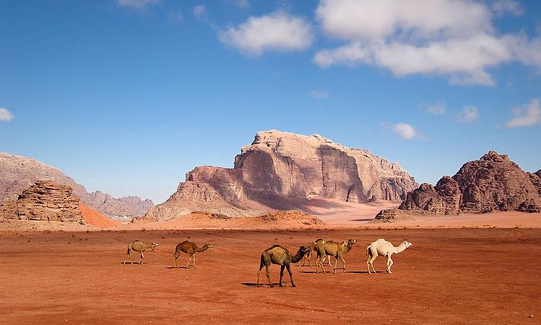 Wadi Rum..jpg