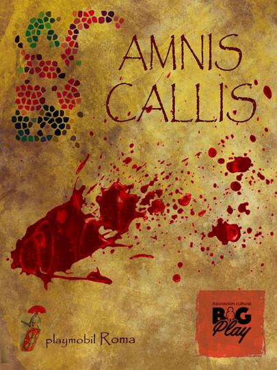 bigplay-amnis-callis-001.jpg