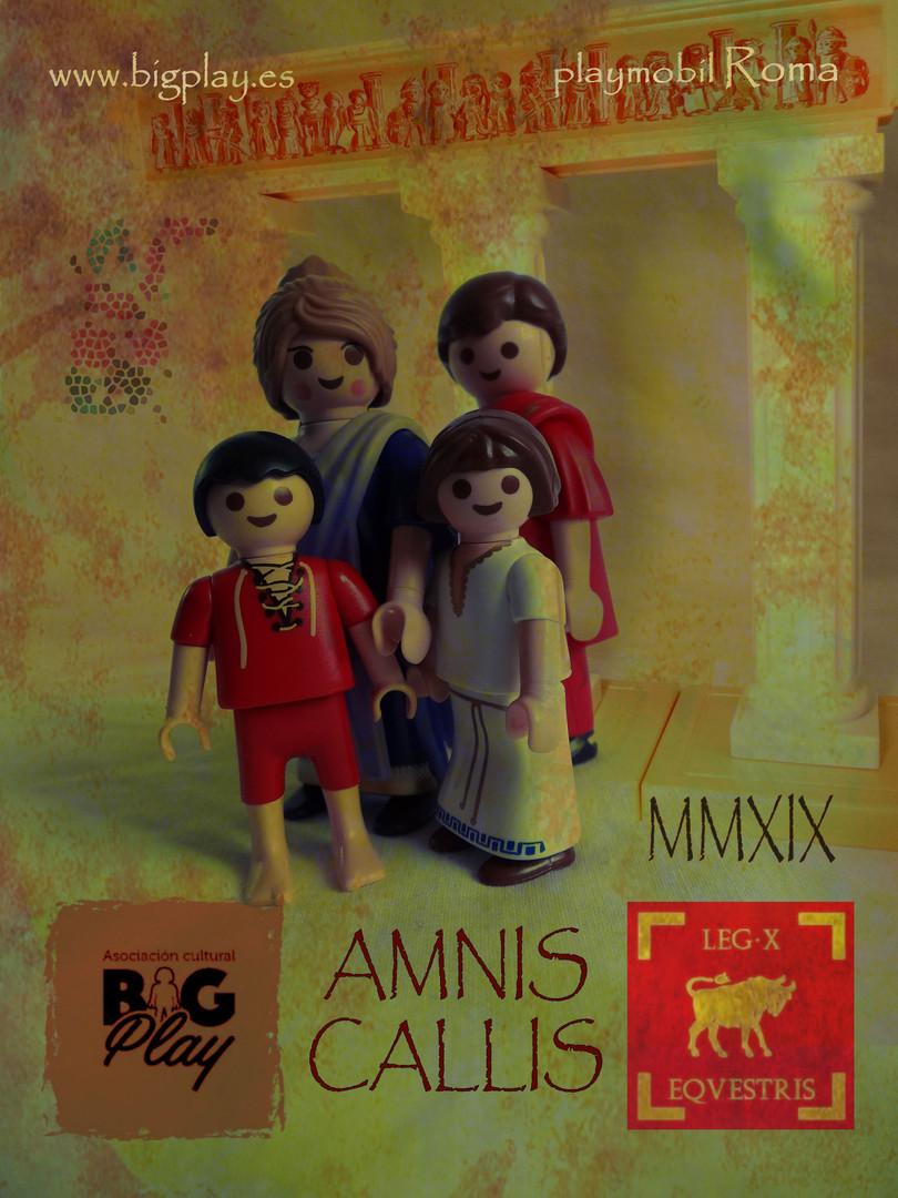 bigplay-amnis-callis-007.jpg