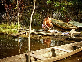 Jaguar Amazon Tours Manaus Brazil Adventure Tour Local Family