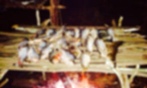 Roasting Fish in the Amazon Dschungelüberlensreise Jungle Survival Tour Manaus Brazil Jaguar Amazon Tours