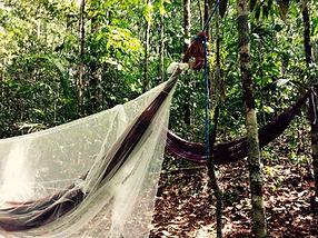 Jaguar Amazon Tours Manaus Brazil Hammocks in forest