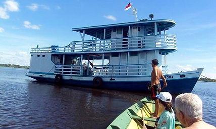 Jaguar Amazon Tours Manaus Brazil River Cruise Barco Andiroba