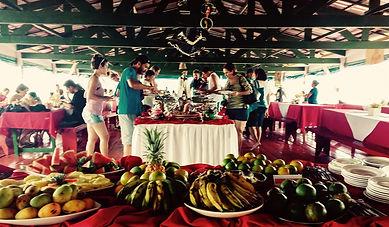 Jaguar Amazon Tours Manaus Brazil Day Trip Lunch Buffet in Januari Ecological Park