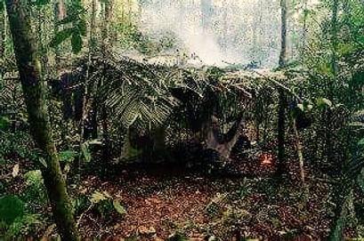 Amazon Jungle Camp Manaus Brazil Jungle Survival Tour Jaguar Amazon Tours