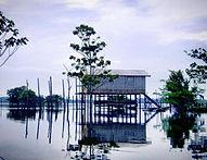 Jaguar Amazon Tours Manaus Brazil Adventure Tour Casa Palafita