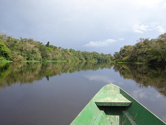 Brésil: l'Amazonie part II,  Welcome to ze jungle!