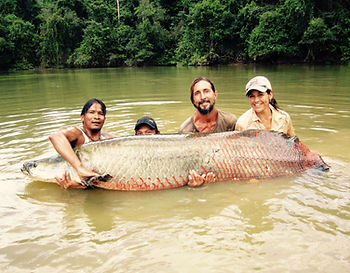 Jaguar Amazon Tours Manaus Brazil Day Trip Giant Piraracu Fish