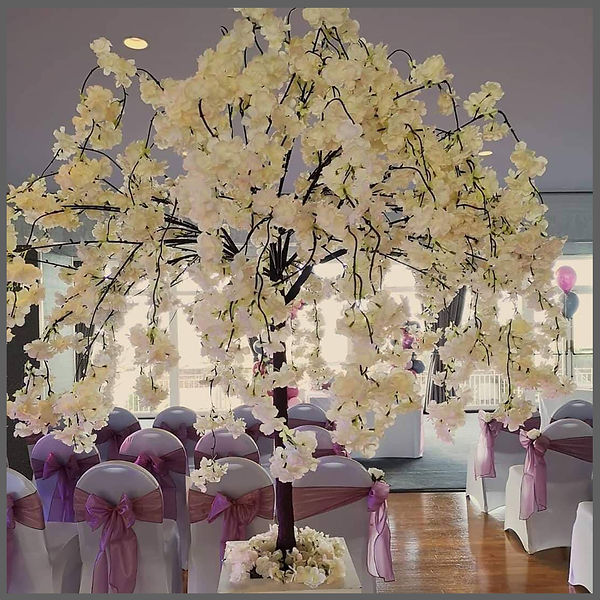 BLUSH PINK AND VINTAGE PINK WEDDINGS BLOSSOM TREES FOR WEDDING DAYS, LOWESTOFT WEDDING HIRE, WEDDINGS IN SUFFOLK, THE HOTEL VICTORIA, KIRKLEY, BECCLES NORWICH WEDDING HIRE, WAVANEY WEDDING HIRE, SILVER WEDDING, GREY WEDDING, CHAIR COVERS WITH SILVER SASHES, GREY SASHES, BLOSSOM TREES 7FT TREES, PERFECT BEACH WEDDING, TOP TABLE FLOWERS, WEDDING BALLOONS