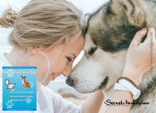 House Train Any Dog Review - The secret of dog training