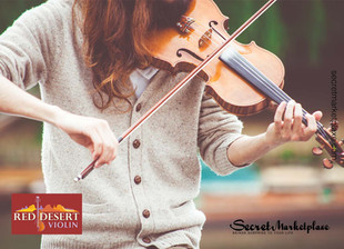 The Red Desert Violin Program Review - Violin Lessons For Beginners