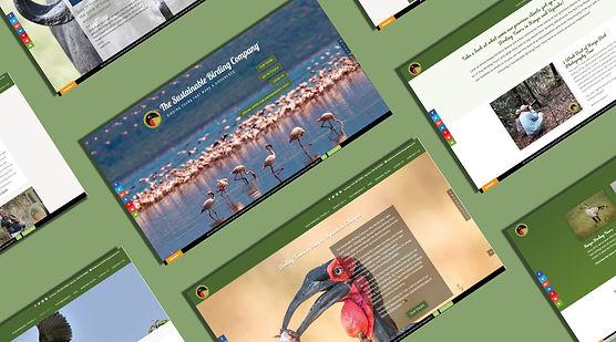 Website Design for SBC-01.jpg