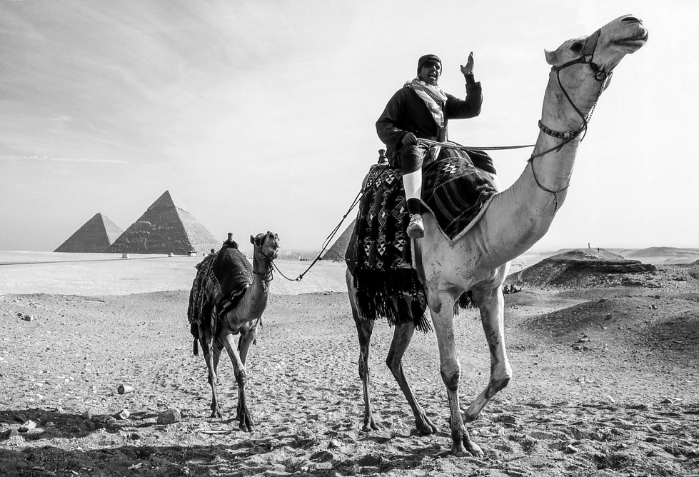 Camel Ride?