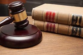 environmental litigation gavel expert witness