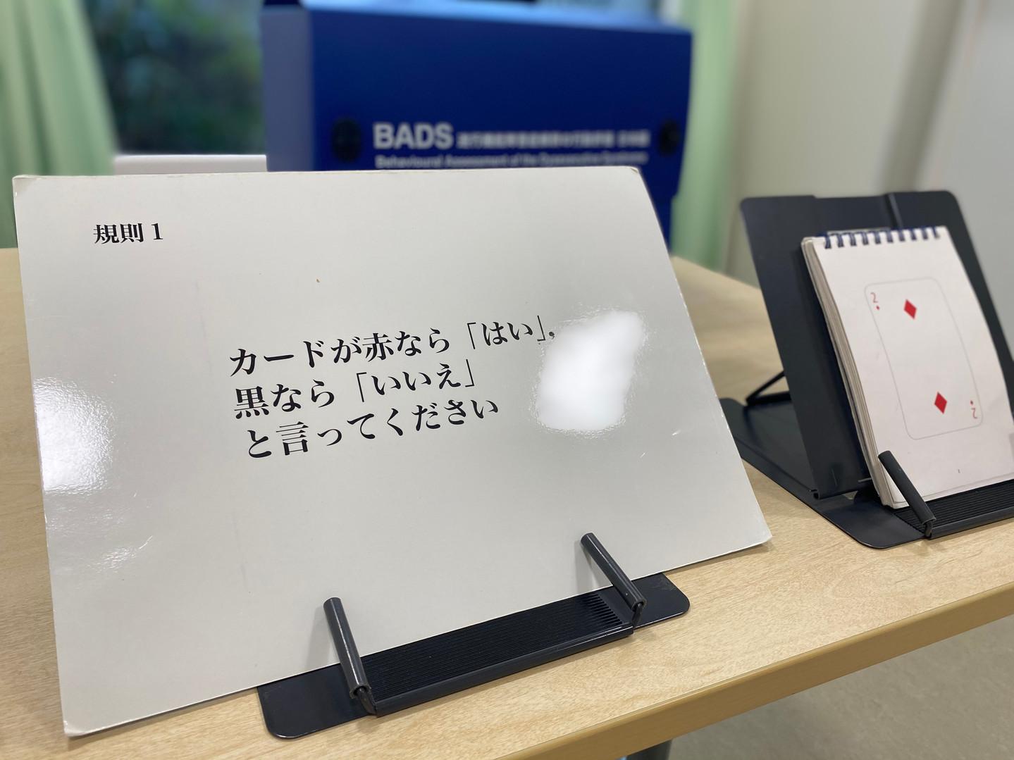 BADS (13).JPG