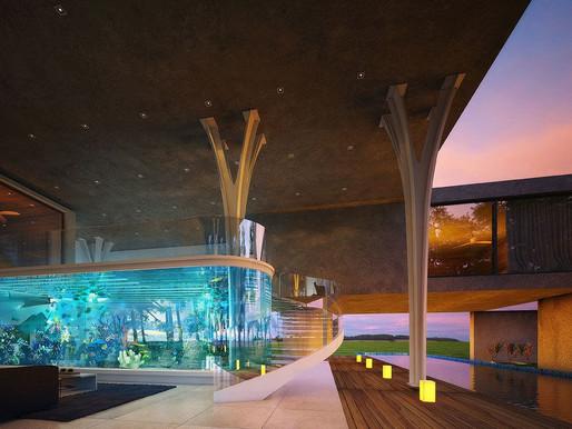 Home Aquariums Become Nature-Based Art Experiences